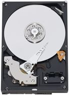Disco duro interno Western Digital WD RE4 - 500 GB - SATA 3 Gb/s - Buffer 64 MB - 7.200 rpm - 3.5'' - Desktop - Enterprise - 5 años de garantía (WD5003ABYX)